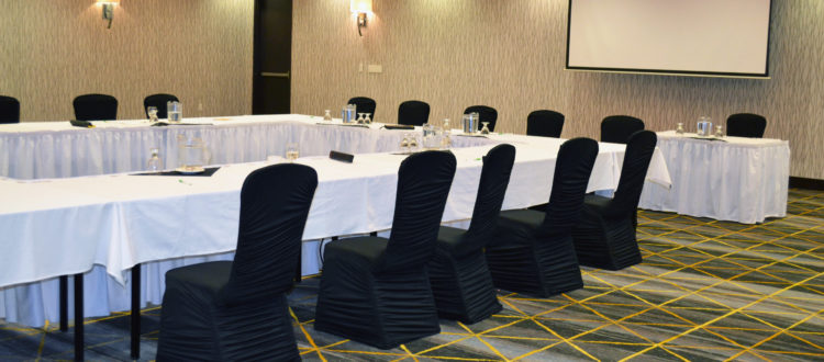 Business Presentation and Meeting in Promenade A at Holiday Inn & Suites Red Deer Hotel